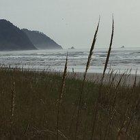 Del Rey Beach State Recreation Site