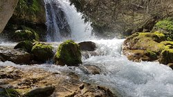 Natural Monument Ripaljka