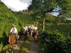 Valle Verde Horse Riding