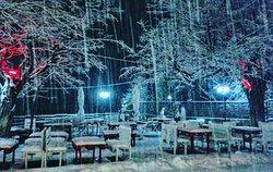 snowing January 2017