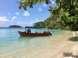 Panama Reef Divers