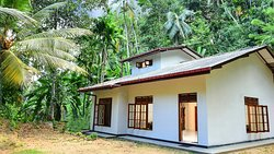 Jungle Village Homestay
