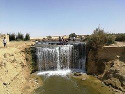 Al-Fayoum Oasis tours