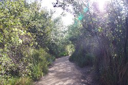 One of pathways in the park