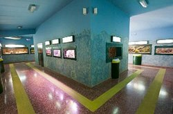 Ecomuseo del Parque Natural del Delta del Ebro