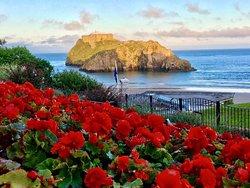 St. Catherine's Island