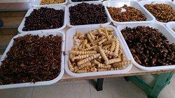 Zhuanxin Wet Market