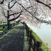 Ishigakiike Park