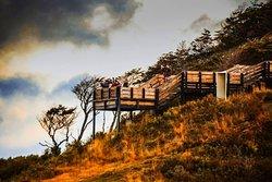 Parque Del Estrecho De Magallanes