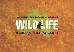 WILD LIFE Hamilton Island