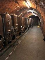 Weinbau - Gästezimmer Kroneder
