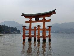 Itsukushima Shrine Torii
