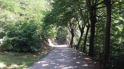 Parco della Maddalena