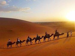 Sahara Holiday Tours