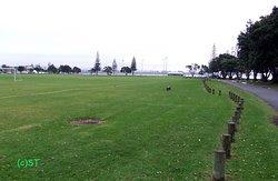 Fergusson Park