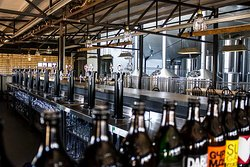 Darling Brew Tasteroom