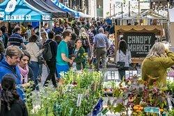 Canopy Market