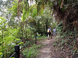 Hemmant Trail