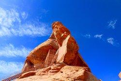 Vegas Desert Tours