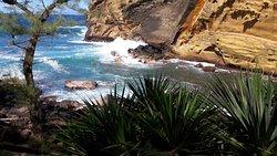 Le Cap Jaune