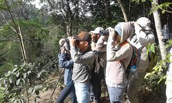 Atitlan Birding Tours