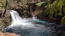 McKenzie River Trail