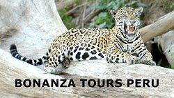 Bonanza Tours Peru
