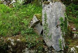 Dolina Celtica