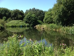 Burrs Country Park