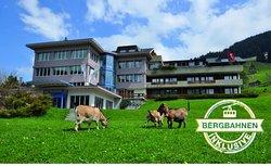 Ferien- und Familienhotel Alpina