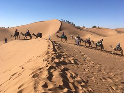 Adventures Desert