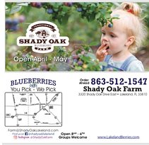 Shady Oak Farm