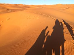 Unique Sahara Tours