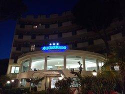 Schiller Hotel