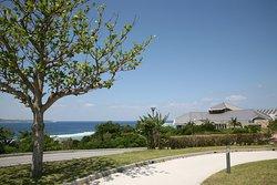 حديقة أوكيناوا التذكارية  وحديقة معرض المحيط