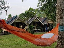 Bay Yard Hut
