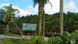 Bukit Tinggi Rabbit Farm