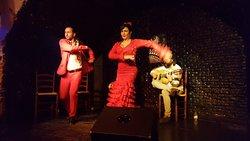 Flamenco al BarCo