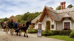 Killarney Jaunting Cars - Tangney Tours