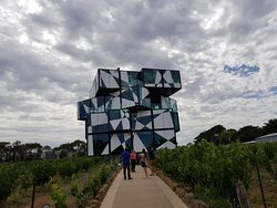 Wine Tasting at McLaren Vale and Adelaide Hills