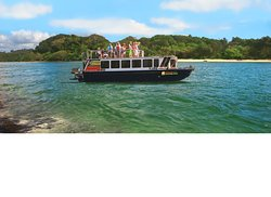Byron Bay Eco Cruises & Kayaks