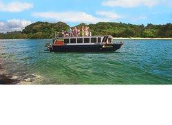 Byron Bay Eco Cruises & Kayaks