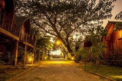 Bamboo Bungalow