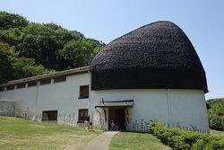 Nemunoki Child Museum