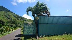 Island Distillers