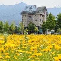 Nogodan Guesthouse & Hotel