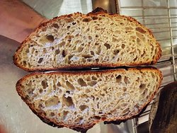 Our pride and joy, father of all bread, the Sourdough