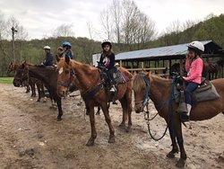 Happy Trails Horseback Riding