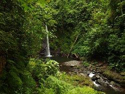 Bombaim Waterfalls