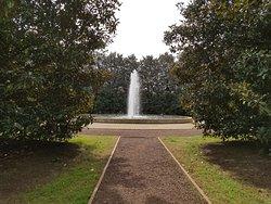Milliken Arboretum